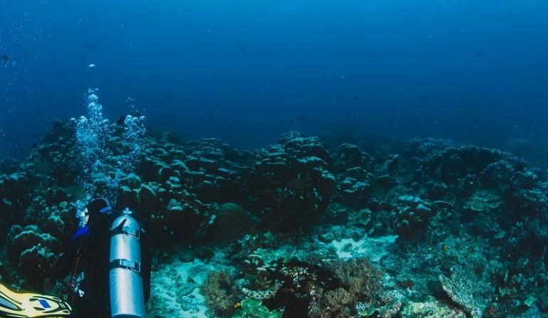 Scuba Diving Albania, water sports