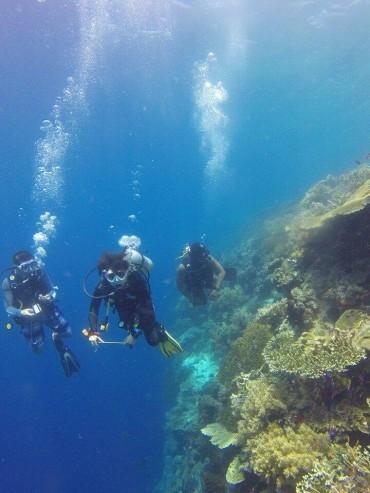 Diving Albania sky sports center
